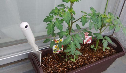 家庭菜園の土(有機栽培)おすすめ5選!コンポストも紹介!