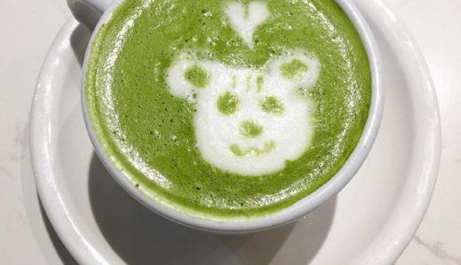 【マツコの知らない世界】生茶ゼリーの通販での購入方法・口コミを紹介!